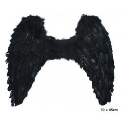 ailes noires